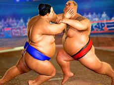 Sumo Wrestling Online